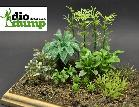 DD094 Jungle plants 1:35