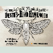 IMFF013 Deaths-Head Hawkmoth